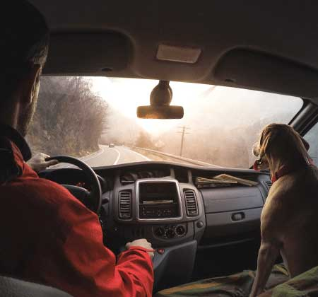 Man and dog in cab of truck driving