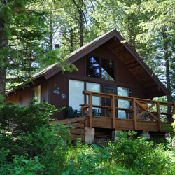 forest, cabin, 4 STEPS TO MAKE OPENING THE CABIN A BREEZE, outdoors, trees, nature,