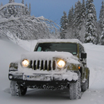 Jeep covered in snow, transportation, snow, winter, driving, jeep, trees, car,