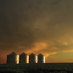 Grain dryers in the sunset.