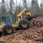 Forestry equipment picking up logs, equipment, forestry equipment, logs, forest, wood