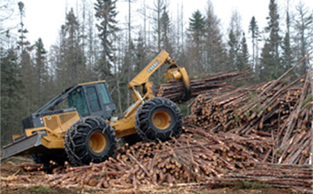 Forestry equipment picking up logs.